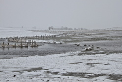 De neige et d'eau