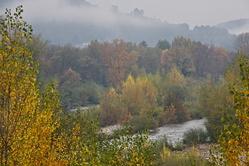 Couleurs d'automne sur les bords du Gardon
