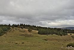La draille et son parc à moutons