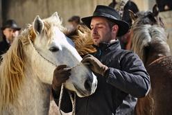 Gardian et son cheval