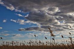 Sagnes et nuages