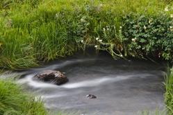 Ruisseau des Plèches