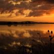 Lever de soleil sur la Vilaine