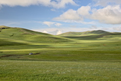 Seul sur la piste en pleine steppe