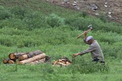 Du bois pour le poêle