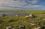 Le lac de St Andéol